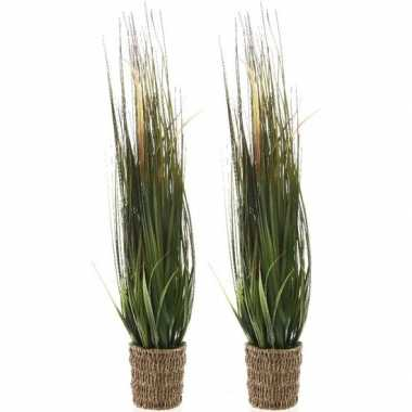 2x groene grasplanten kunstplanten 80 cm in rieten mand