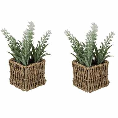 2x kunstplant witte lavendel in rieten mandje 19 cm