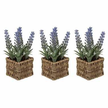 Set van 3x stuks kunstplanten paarse lavendel in rieten mandje 19 cm